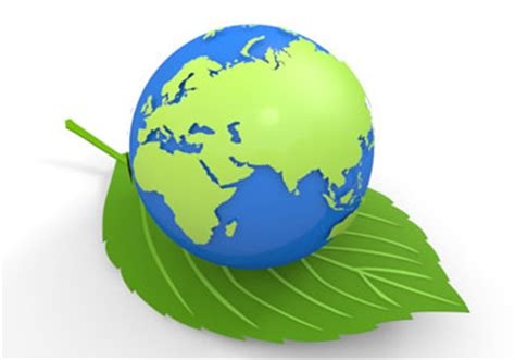 Write an essay on environment and human health